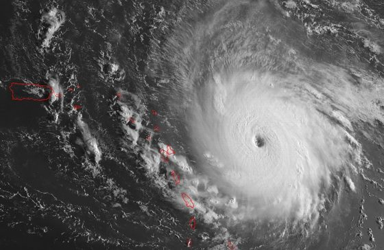 Hurricane Irma Preparations and Safety from Arwood Waste