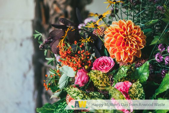 Happy Mother's Day - (888) 413-5105 Toll Free – Dumpster, Residential Roll Off Dumpster, Front Load Equipment, Commercial Dumpster, Construction Dumpsters and Demolition – Free Quote